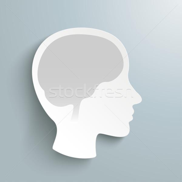 Human Head Brain Stock photo © limbi007