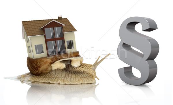 Romana caracol vida casa gris párrafo Foto stock © limbi007