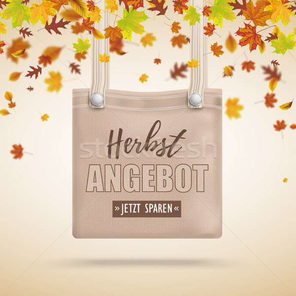 Brown Purse Bag Herbstangebot Autumn Foliage Stock photo © limbi007