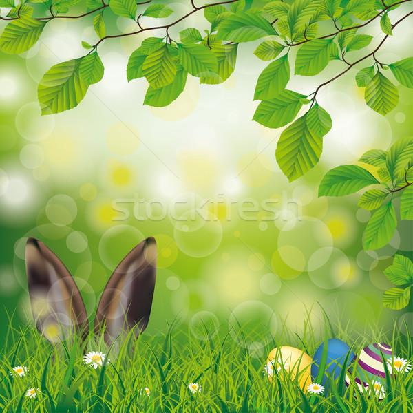 Wielkanoc wiosną zając jaj kwiaty kłosie Zdjęcia stock © limbi007