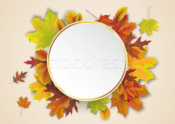 Arany kör ősz lomb eps 10 Stock fotó © limbi007