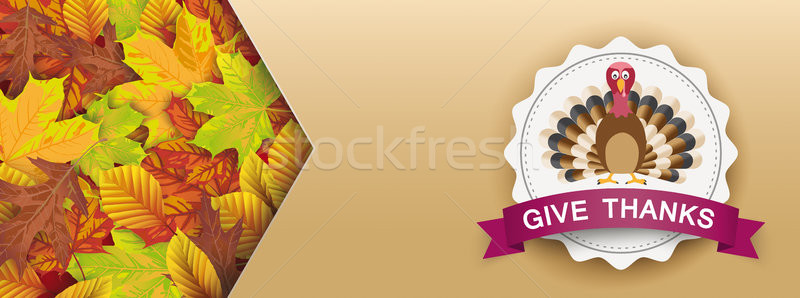Header Autumn Emblem Give Thanks Foliage Arrow Stock photo © limbi007