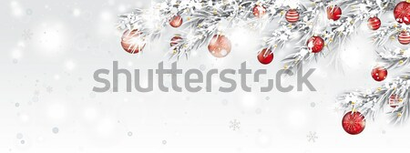 Frozen Twigs Sun Glitter Deco Red Baubles Snowfall Header Stock photo © limbi007