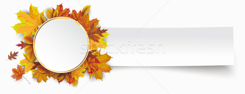 Paper Banner Golden Circle Autumn Foliage Stock photo © limbi007