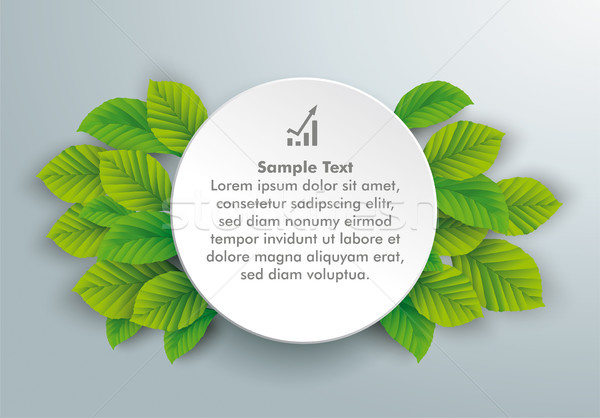 White Paper Circle Green Beech Leaves Stock photo © limbi007