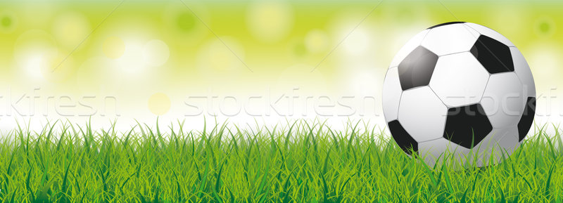 Football Grass Bokeh Green Header Stock photo © limbi007