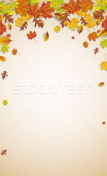 Sonbahar yeşillik kahverengi yasal gölgeler eps Stok fotoğraf © limbi007