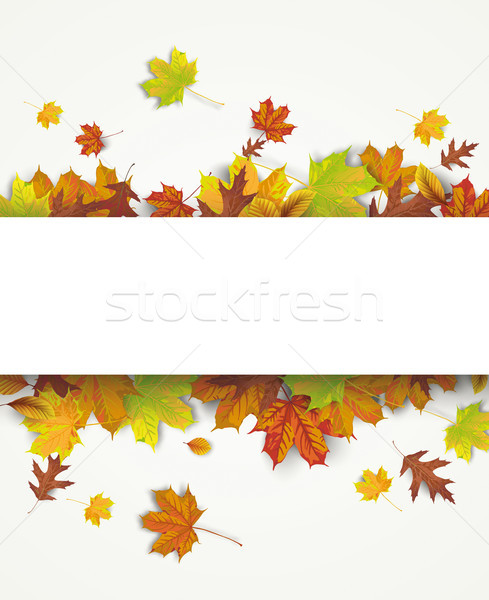 Autumn Foliage White Paper Banner Flyer Stock photo © limbi007