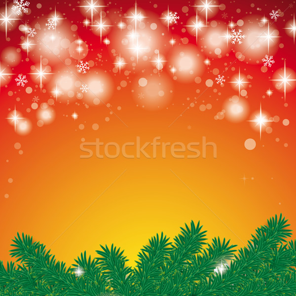 Snow Light Fir Branch Red Background Stock photo © limbi007