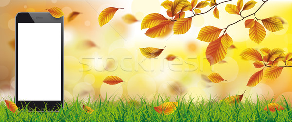 Autumn Beech Foliage Sunlights Grass Smartphone Stock photo © limbi007