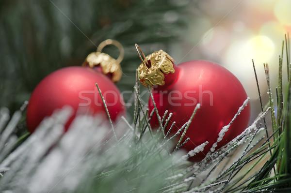 Сток-фото: Рождества · красный · соснового · дерево