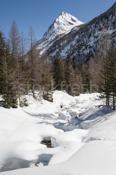 Dağ manzara dere kar gökyüzü kış Stok fotoğraf © limpido