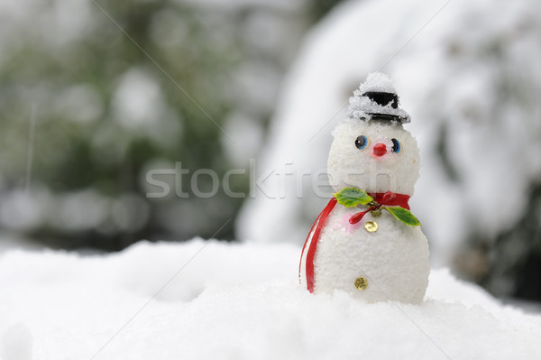 Kardan adam Noel kış manzara gülümseme şerit Stok fotoğraf © limpido