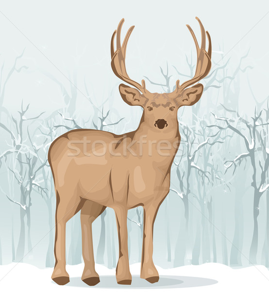 Reindeer illustration Stock photo © lindwa