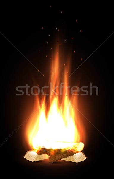 Campfire in dark Stock photo © lindwa