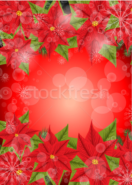 Red Poinsettia Stock photo © lindwa