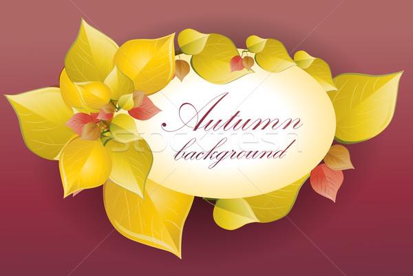 Outono floresta projeto jardim quadro laranja Foto stock © lindwa