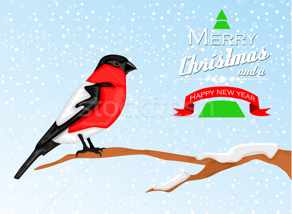 Christmas background with Bullfinch bird Stock photo © lindwa