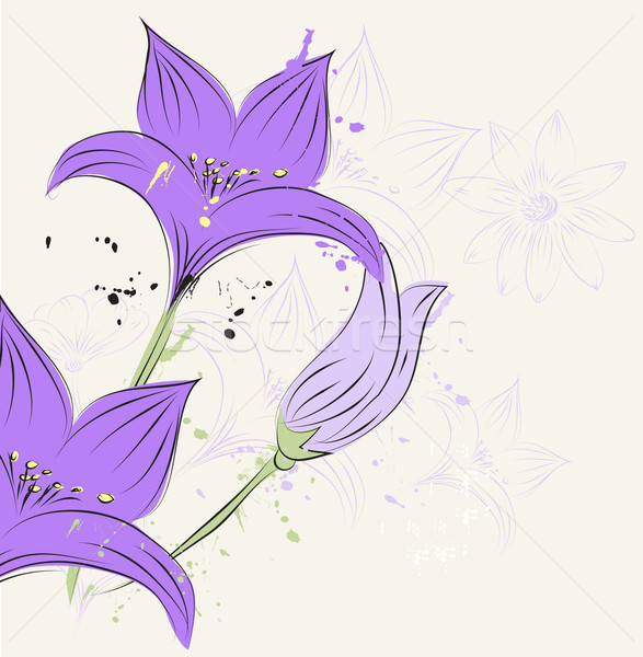 Floral printemps design feuille peinture jardin Photo stock © lindwa