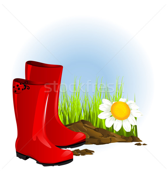 red rubber boot Stock photo © lindwa