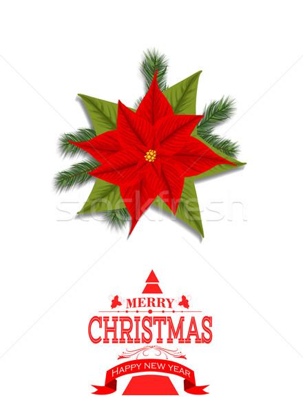 Noël usine carte modèle vacances célébration Photo stock © lindwa