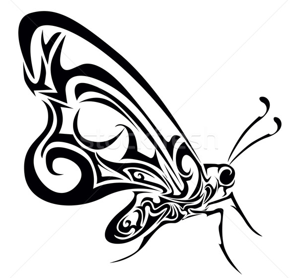 Butterfly vector illustration Stock photo © lindwa