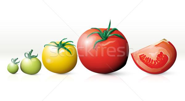 Croissant tomates vecteur fruits fond cuisine Photo stock © lindwa