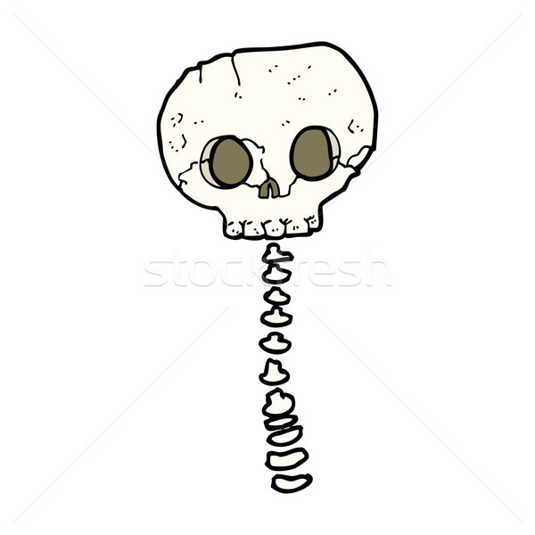 cartoon spooky skull and spine Stock photo © lineartestpilot