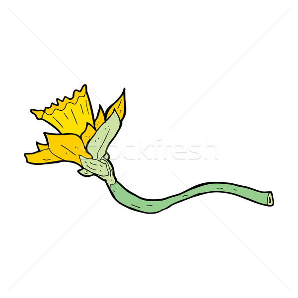 Cartoon Daffodil цветок дизайна искусства ретро Сток-фото © lineartestpilot