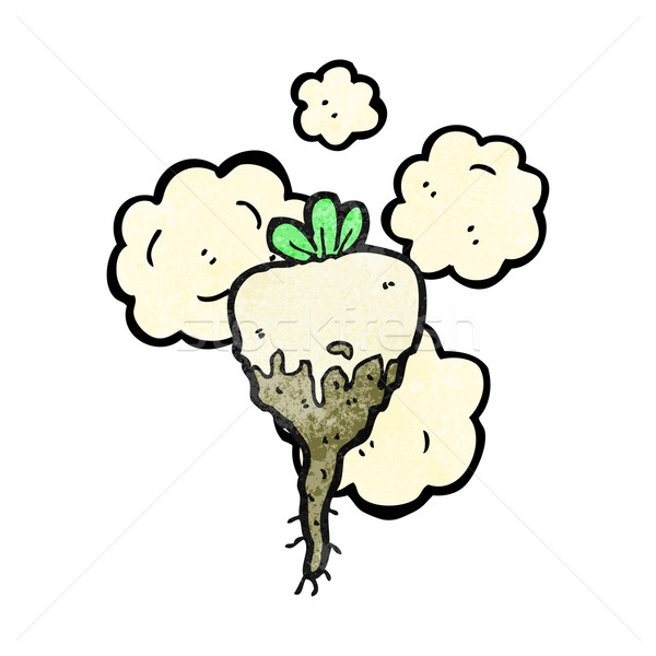 cartoon turnip Stock photo © lineartestpilot