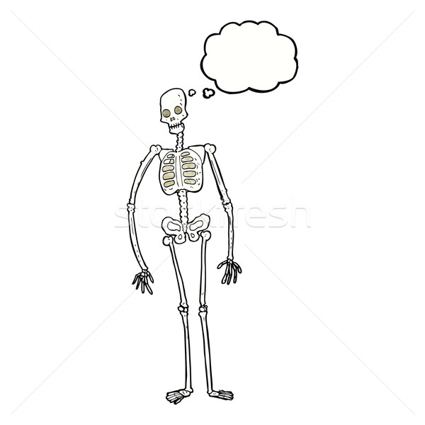 cartoon spooky skeleton with thought bubble Stock photo © lineartestpilot