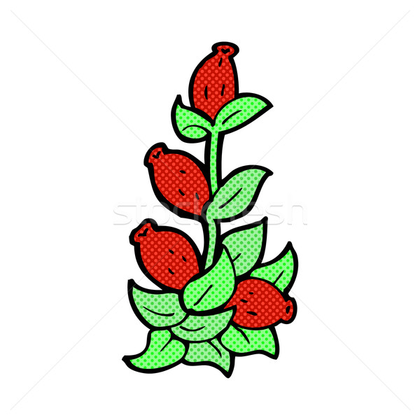 comic cartoon rosehip flowers Stock photo © lineartestpilot