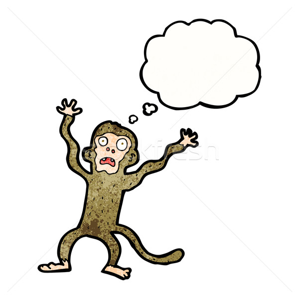 cartoon frightened monkey with thought bubble Stock photo © lineartestpilot