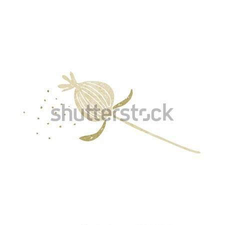 cartoon dried poppy flower Stock photo © lineartestpilot