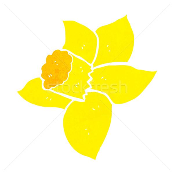 cartoon daffodil Stock photo © lineartestpilot