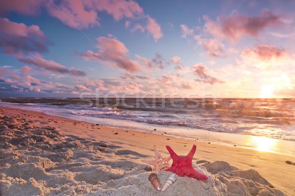 Paysages Pologne belle coucher du soleil mer baltique nature Photo stock © linfernum