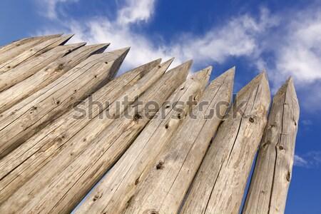 Naturelles bois nuageux ciel résumé nature Photo stock © linfernum