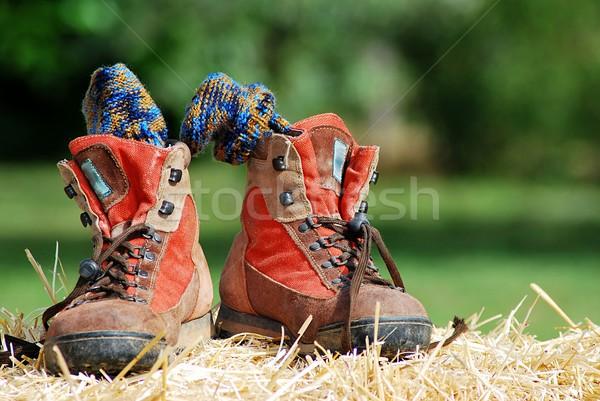 Trekking shoes Stock photo © Lio22