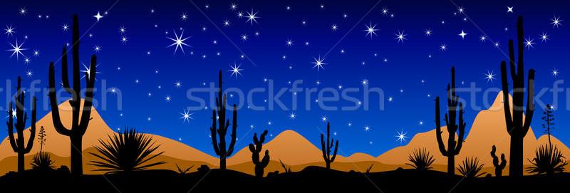 Woestijn nacht sterren landschap Stockfoto © liolle