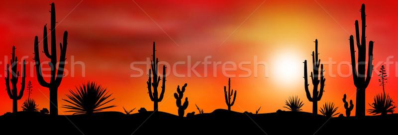 メキシコ 砂漠 日没 メキシコ料理 シルエット 石 ストックフォト © liolle
