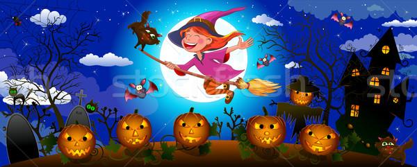Сток-фото: Хэллоуин · Cute · ведьмой · метлой · ночь · мало