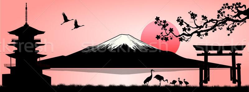 Paisagem Monte Fuji silhueta fuji montanha pôr do sol Foto stock © liolle