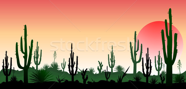 The stony desert, the sunset  Stock photo © liolle