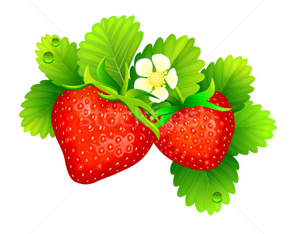 Ripe red strawberries Stock photo © liolle
