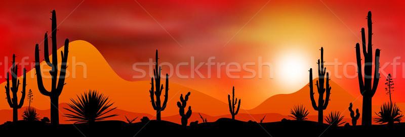 日没 太陽 砂漠 シルエット 石 植物 ストックフォト © liolle