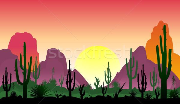 Woestijn zonsondergang silhouetten stenen planten landschap Stockfoto © liolle