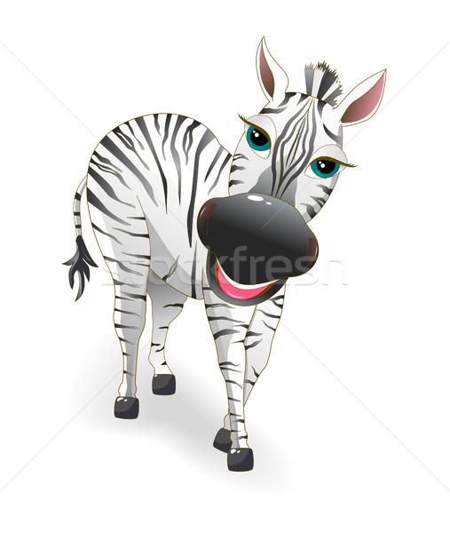 Zebra Stock photo © liolle
