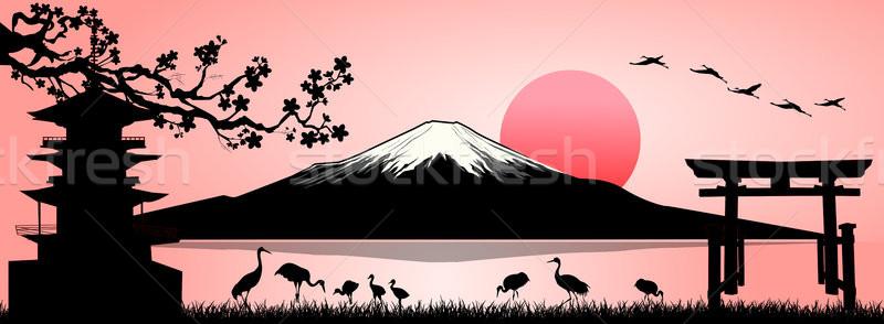 Fuji Dağı manzara siluet fuji dağ gün batımı Stok fotoğraf © liolle