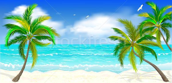 Tropisch strand palmbomen landschap tropische wal zee Stockfoto © liolle