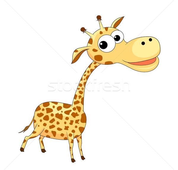 Cute divertente giraffa piccolo cartoon bianco Foto d'archivio © liolle